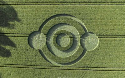 Crop Circle de Norridge : l'analyse de Franck Bonneau